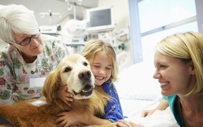 Animal-Assisted Therapy and Children